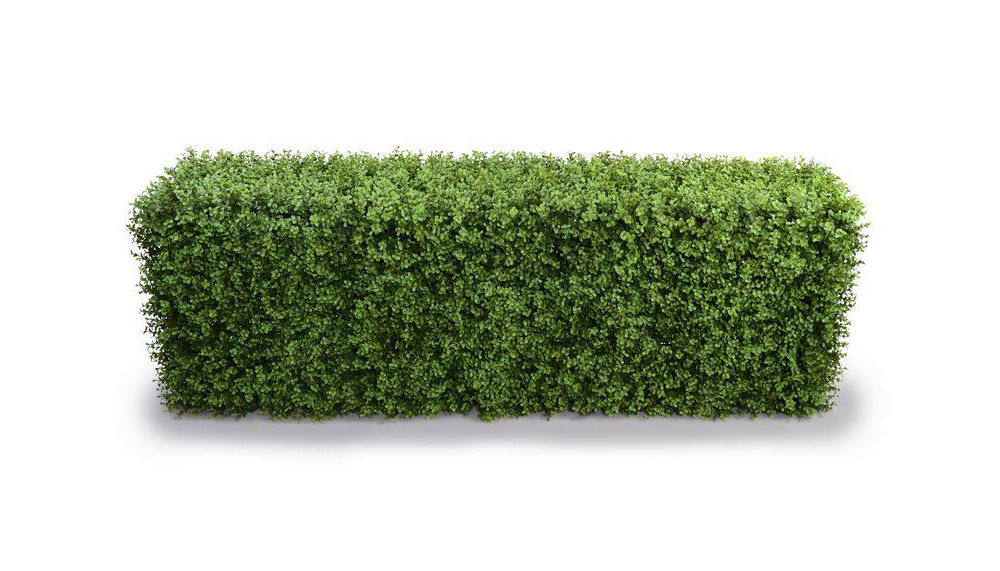 62in. Faux Boxwood Hedge