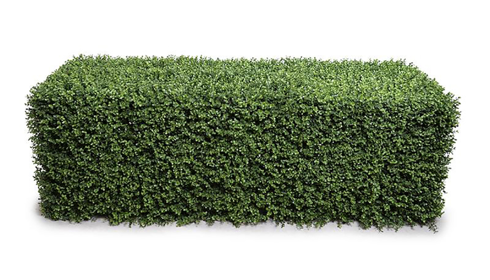 62in. Extra-Wide Boxwood Hedg