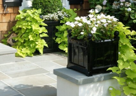 Capital Garden Items for $300-$500