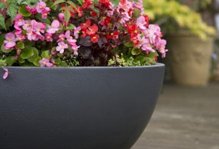 Capital Garden Bowl Planters