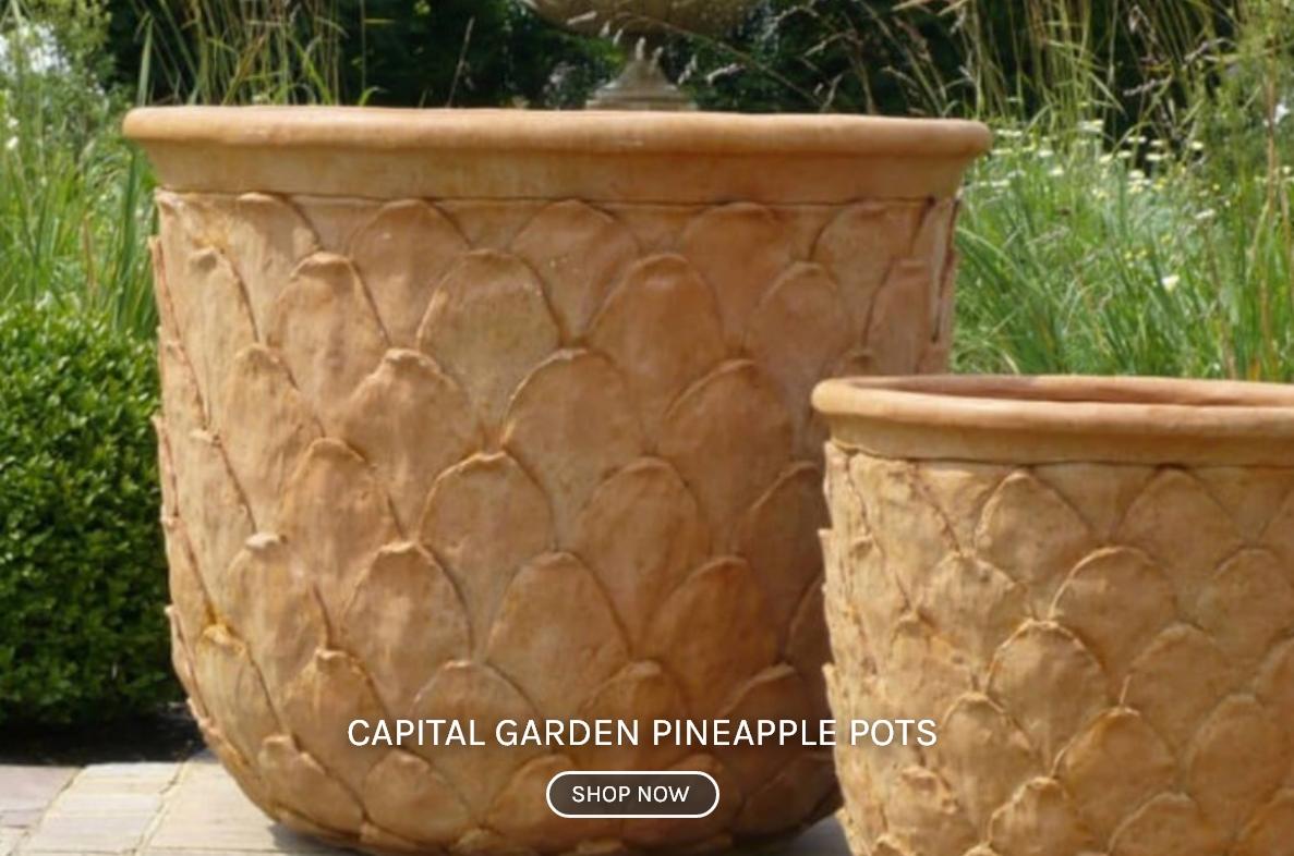 Capital Garden Pineapple Pots