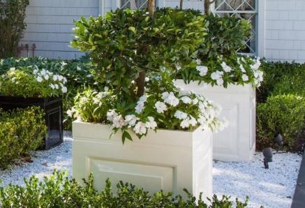 Capital Garden Bowl Window Boxes & Trough Planters
